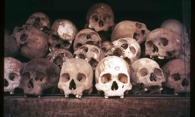 an introduction to the genocide in the twentieth century Introduction to genocide genocide can be defined as the act of killing most likely the most widely known example of european genocide in the twentieth century.